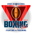 banner on the boxing theme vector image