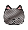 cute and tender cat vector image