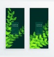 leaf nature verticle banner card vector image vector image
