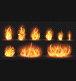 realistic flames burning red wildfire flames vector image