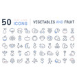 set flat line icons vegetables and fruit vector image vector image
