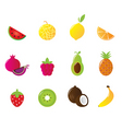 juicy fruit icons set isolated vector image