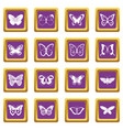 butterfly icons set purple vector image vector image