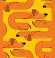 dachshund sleeps pattern dog is long ornament vector image