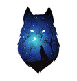 double exposure silhouette of wolf in the night vector image vector image