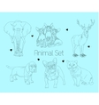 line animal set vector image vector image