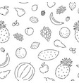 pattern seamless fruits line doodle plant vector image