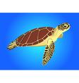 sea turtle on blue background vector image