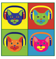 brightly colored cats in the music headphones vector image vector image