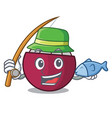 fishing fresh mangosteen fruit in the market vector image
