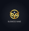 gold round abstract star logo vector image vector image