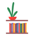 green cactus in red pot shelf with multi-colored vector image