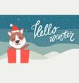hello winter greeting card happy bear waving hand vector image vector image
