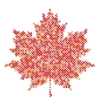 Maple leaf isolated dot abstract design symbol vector image vector image