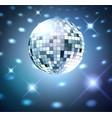 Silver disco bal vector image vector image