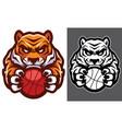 tiger basketball mascot vector image vector image
