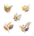 watercolor autumn set with leaves