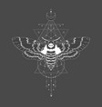 dead head moth and geometric symbol vector image vector image