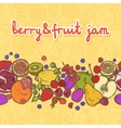 Fruits and berries border horizontal vector image vector image