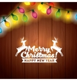 installation of Christmas lights decoration vector image