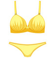 isolated cute female underwear vector image vector image