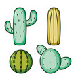 set cactus plants nature icons vector image vector image