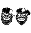 set head angry gorilla with baseball cap vector image vector image