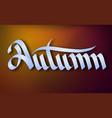 typographical seasonal template vector image vector image