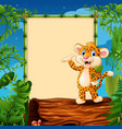 cartoon leopard presenting on hollow log near the vector image vector image