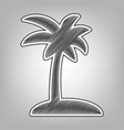 coconut palm tree sign pencil sketch vector image vector image