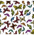 Colorful seamless flying butterflies pattern vector image vector image