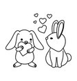 cute rabbits couple with hearts love vector image vector image