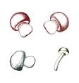 hand drawn mushrooms set vector image vector image