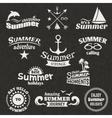 Summer element label vector image vector image