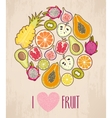 Circle made with fruit vector image
