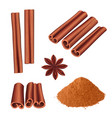 cinnamon spice herbs dessert aromatic food stick vector image vector image