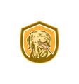 Labrador Dog Head Shield Woodcut vector image vector image