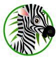 zebra cartoon vector image vector image
