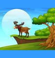 cartoon moose near the cliff vector image