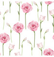 floral seamless pattern with pink eustoma vector image