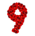 rose petals realistic number vector image