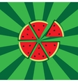 slices of watermelon vector image vector image