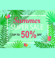 summer super sale jungle background vector image vector image