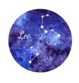Watercolor horoscope sign Leo vector image