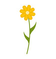 Wildflowers flower flat icon plant isolated on