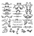 Floral decorative element collection vector image