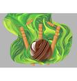 cricket match vector image