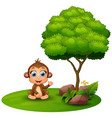 cartoon monkey sitting under a tree on a white bac vector image vector image