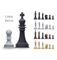 Chess Figures big set vector image