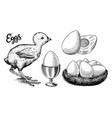 chicken and egg holder nest and yolk engraved vector image
